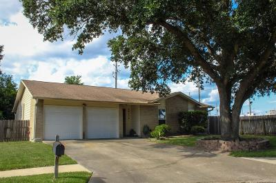 Katy Single Family Home For Sale: 22002 Silver Lode Drive
