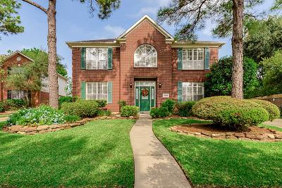 Houston Single Family Home For Sale: 17206 Palm Falls Court