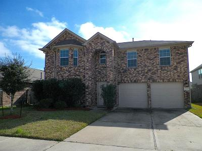 Harris County Single Family Home For Sale: 22219 Hammerhead Ct Court