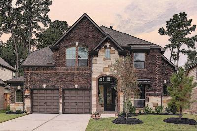 Fall Creek Single Family Home For Sale: 14827 Fall Creek View Drive