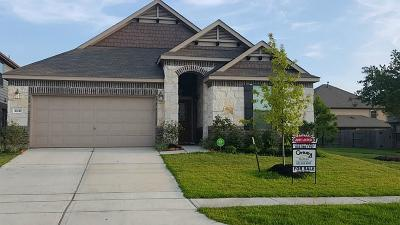 Houston Single Family Home For Sale: 16443 Williamstown Drive