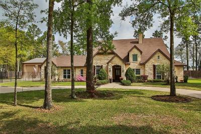 Tomball Single Family Home For Sale: 11150 Rusty Pine Lane