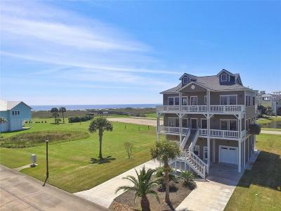 Galveston Single Family Home For Sale: 26115 Flamingo Drive