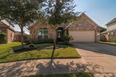 Pearland Single Family Home For Sale: 13502 Misty Shadow Lane