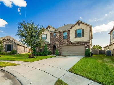 Houston Single Family Home For Sale: 5014 Hinsdale Court