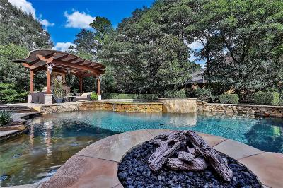 The Woodlands Single Family Home For Sale: 15 Pawprint Place