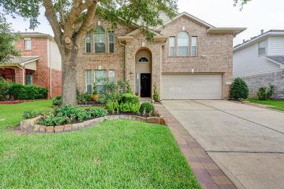 Tomball Single Family Home For Sale: 11814 Green Willow Falls Drive