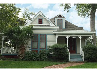 La Grange Single Family Home For Sale: 353 N Madison Street
