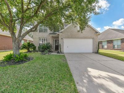 Houston Single Family Home For Sale: 16419 Sunlamp Court