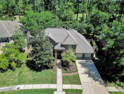 Cypress Single Family Home For Sale: 13415 Missarah Lane