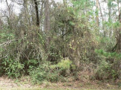 Willis Residential Lots & Land For Sale: 13242 Tom Sawyer