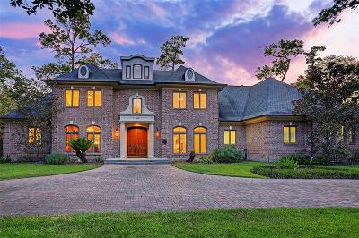 Houston Single Family Home For Sale: 509 Gingham Drive