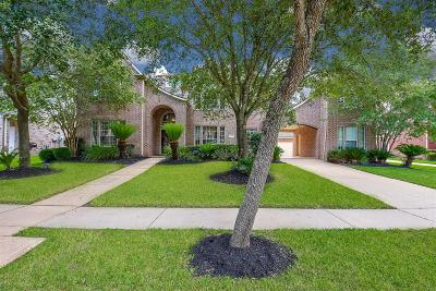 Sienna Plantation Single Family Home For Sale: 9619 Silver Birch Court