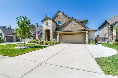 League City Single Family Home For Sale: 6117 Norwood Mills Court