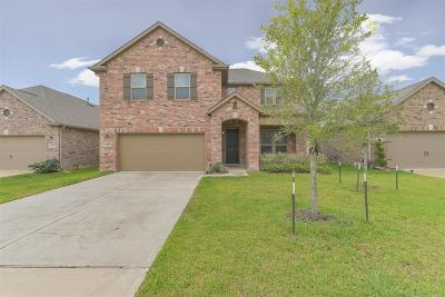 Shadow Creek Ranch Single Family Home For Sale: 3238 Laurel Bend Lane