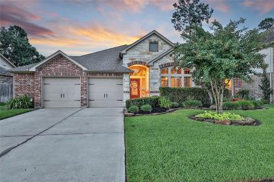 Conroe Single Family Home For Sale: 2607 Imperial Grove Lane