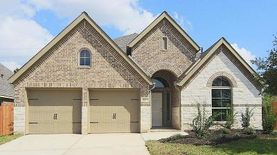 Pearland Single Family Home For Sale: 3727 Ashford Bridge Lane