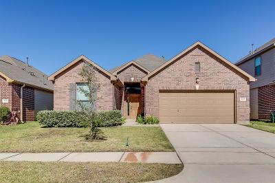 Single Family Home For Sale: 16522 Lanesborough Drive