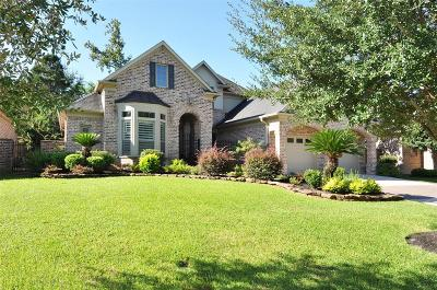 Houston Single Family Home For Sale: 1323 Royal Sands Lane