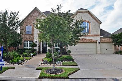 Missouri City Single Family Home For Sale: 9230 Hernshead Lane