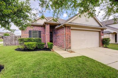 Tomball Single Family Home For Sale: 8746 Sunny Gallop Drive