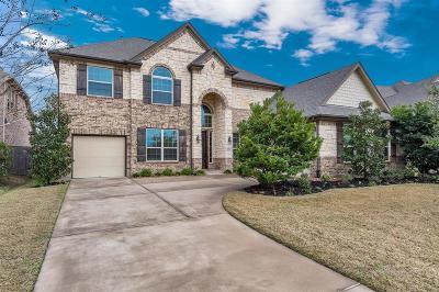 Katy Single Family Home For Sale: 26806 Far Hills Drive