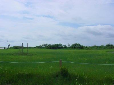 Galveston County Residential Lots & Land For Sale: 1610 Galveston Ave