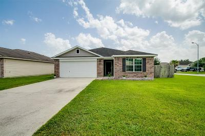 Spring Single Family Home For Sale: 4602 Trinity River Court