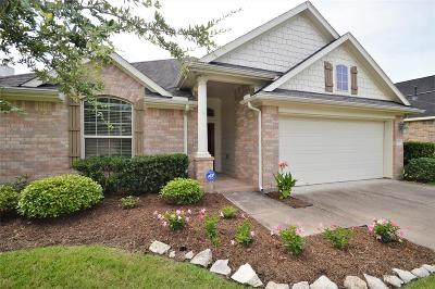 Pearland Single Family Home For Sale: 1805 High Falls Lane