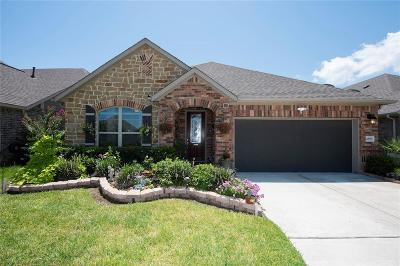 League City TX Single Family Home For Sale: $305,000