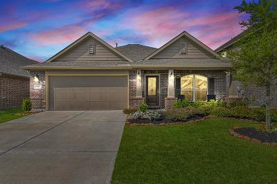 Katy Single Family Home For Sale: 3827 Cactus Field Lane