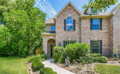 The Woodlands Condo/Townhouse For Sale: 23 Pine Needle Place