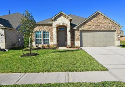 Single Family Home For Sale: 3707 Butterfly Breeze Lane