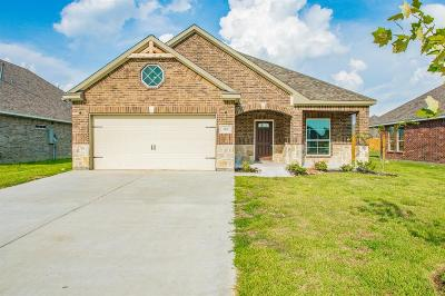Baytown Single Family Home For Sale: 207 Rio Grande Drive