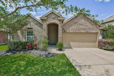 Pearland Single Family Home For Sale: 12901 Winter Springs Drive
