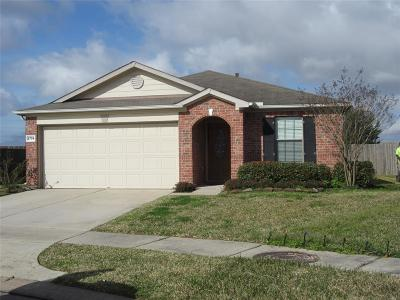 Katy Single Family Home For Sale: 2735 Morninggate Court