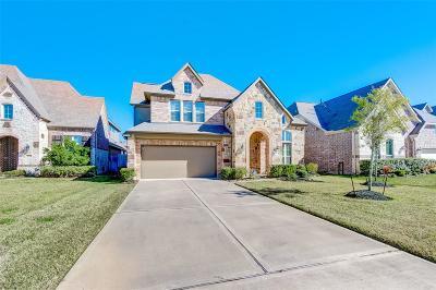 Rosharon Single Family Home For Sale: 4815 Sunset Park Lane
