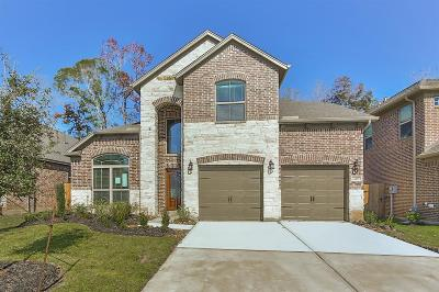 Montgomery County Single Family Home For Sale: 23497 Banks Mill Drive
