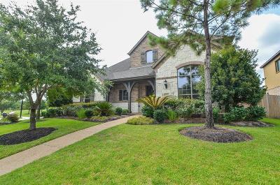 Katy Single Family Home For Sale: 27411 Robillard Springs Lane