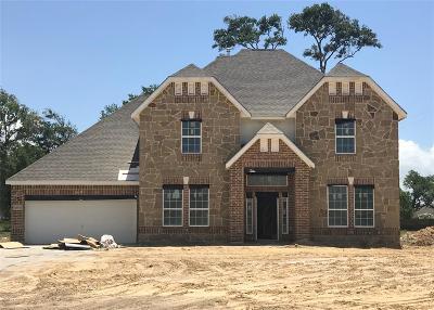 Baytown Single Family Home For Sale: 14802 Starwood Drive