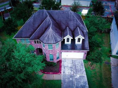 Sugar Land Single Family Home For Sale: 13342 Cedar Creek Point