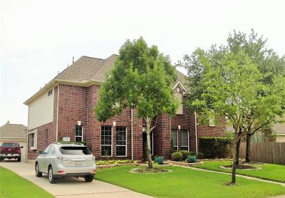 Tomball Single Family Home For Sale: 12714 Briar Harbor Drive