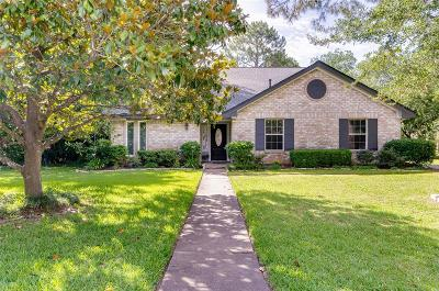 Friendswood Single Family Home For Sale: 301 Colonial Drive