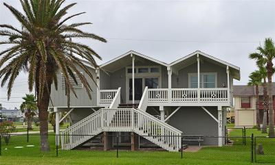 Galveston Single Family Home For Sale: 21906 San Luis Pass Road