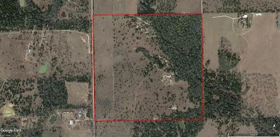 Fayette County Country Home/Acreage For Sale: Tbd Anchor Ranch Loop