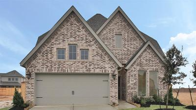 Tomball Single Family Home For Sale: 19810 Bronze Spur Court