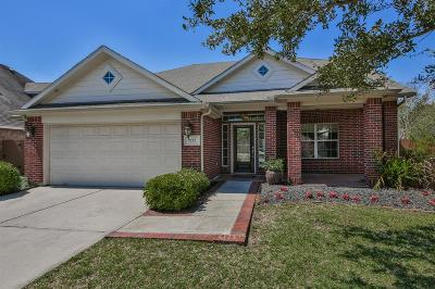 League City Single Family Home For Sale: 2722 San Marco Lane
