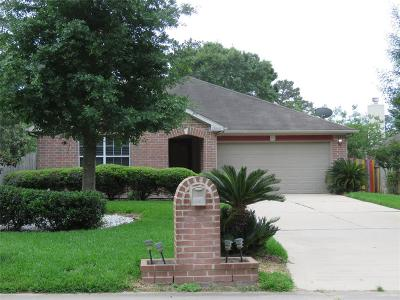 Conroe Single Family Home For Sale: 12045 La Salle Crossing