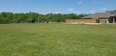 Katy Residential Lots & Land For Sale: 3239 Kenny Street