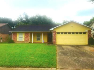 Houston Single Family Home For Sale: 4011 Manordale Drive